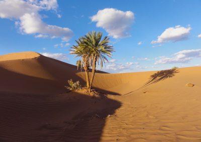 trek-desert-maroc-randonnee-desert-maroc-guide-abdou-vallee-des-roses-mont-mgoun-03