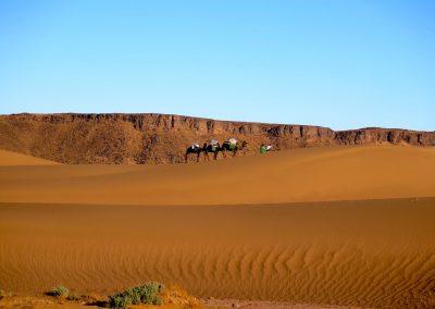 trek-desert-maroc-randonnee-desert-maroc-guide-abdou-vallee-des-roses-mont-mgoun-06