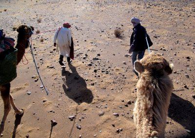 trek-desert-maroc-randonnee-desert-maroc-guide-abdou-vallee-des-roses-mont-mgoun-37