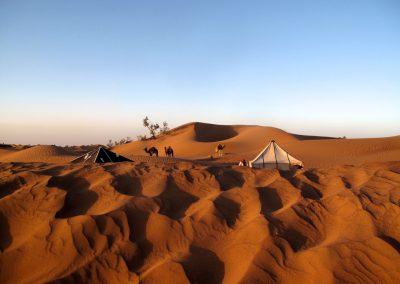 trek-desert-maroc-randonnee-desert-maroc-guide-abdou-vallee-des-roses-mont-mgoun-38