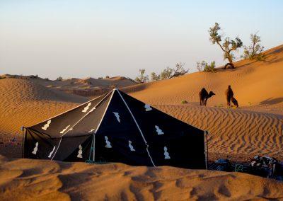 trek-desert-maroc-randonnee-desert-maroc-guide-abdou-vallee-des-roses-mont-mgoun-39
