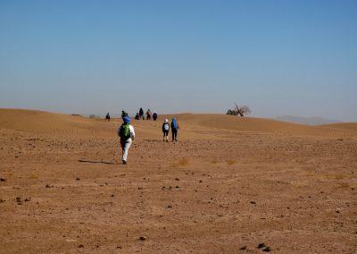trek-desert-maroc-randonnee-desert-maroc-guide-abdou-vallee-des-roses-mont-mgoun-40