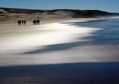 trek-essaouira-randonnee-essaouira-guide-marocain-039