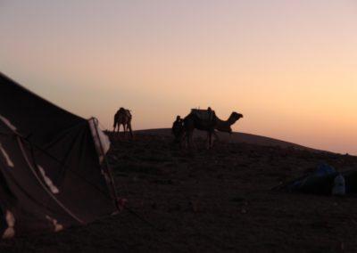 trek-essaouira-randonnee-essaouira-guide-marocain-045