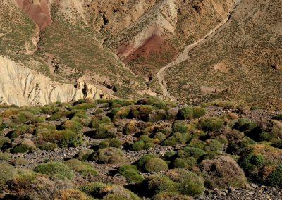 trek-montagne-mont-mgoun-randonnee-trek-guide-mont-mgoung-maroc-027
