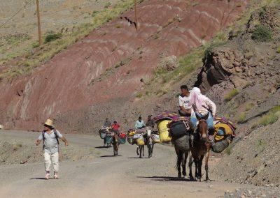 trek-montagne-mont-mgoun-randonnee-trek-guide-mont-mgoung-maroc-034