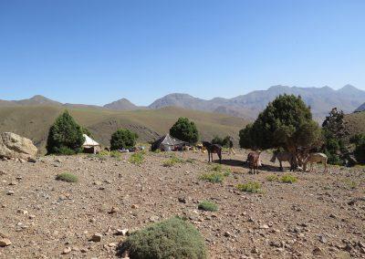 trek-montagne-mont-mgoun-randonnee-trek-guide-mont-mgoung-maroc-038