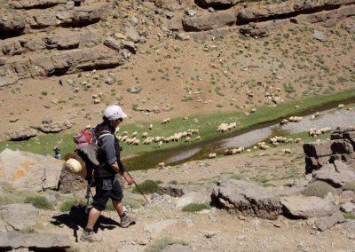 trek-montagne-mont-mgoun-randonnee-trek-guide-mont-mgoung-maroc-053