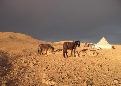 trek-montagne-mont-mgoun-randonnee-trek-guide-mont-mgoung-maroc-061
