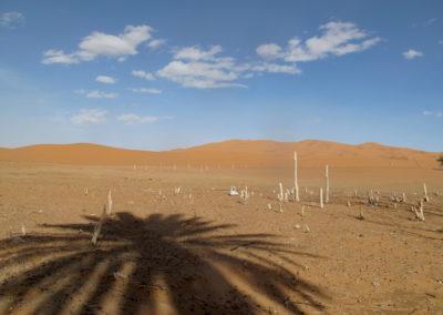 re desert 18 5