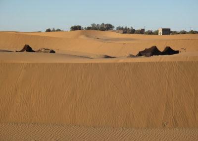 re desert 18 7